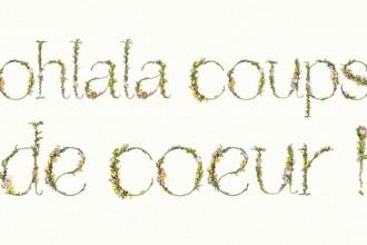 Blossomtype_coupsdecoeur_mini_jesussauvage