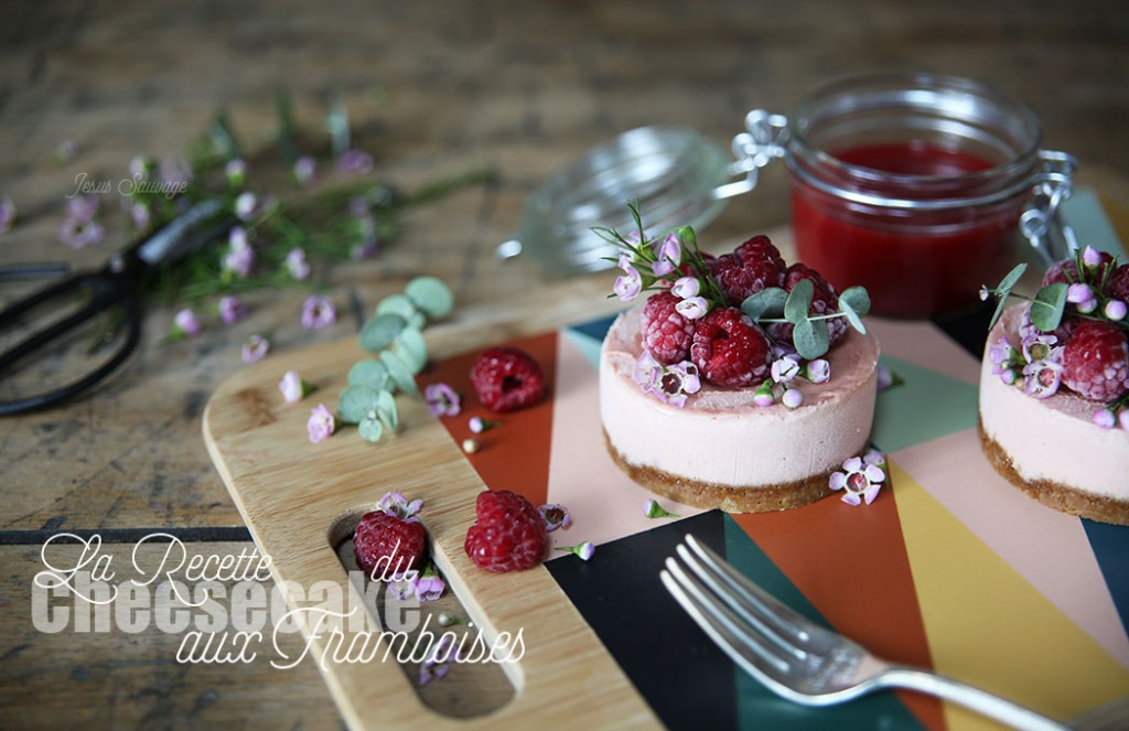 Recipe_Cheesecake_15_Cindy_X_JesusSauvage