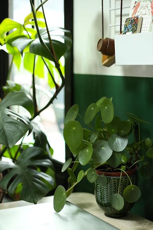 un petit bureau green hometour jesus sauvage. Black Bedroom Furniture Sets. Home Design Ideas